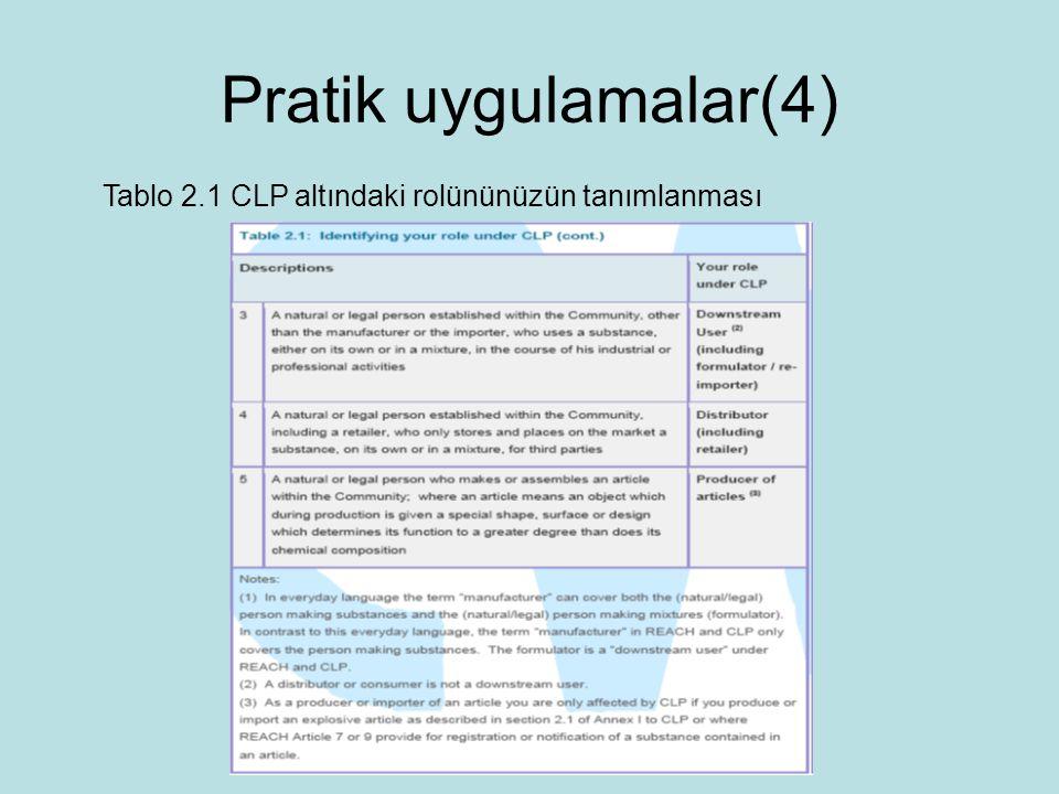 Tablo 2.1 CLP altındaki rolününüzün tanımlanması