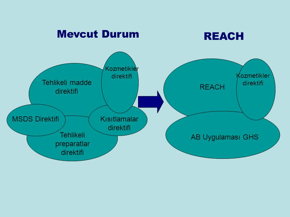 Mevcut Durum REACH Tehlikeli madde direktifi REACH MSDS Direktifi