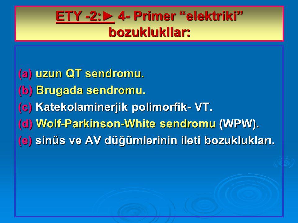 ETY -2:► 4- Primer elektriki bozuklukllar: