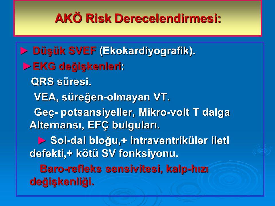 AKÖ Risk Derecelendirmesi: