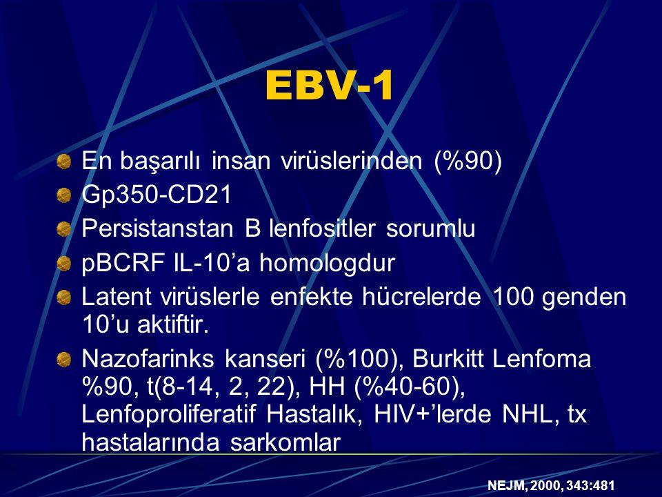 EBV-1 En başarılı insan virüslerinden (%90) Gp350-CD21