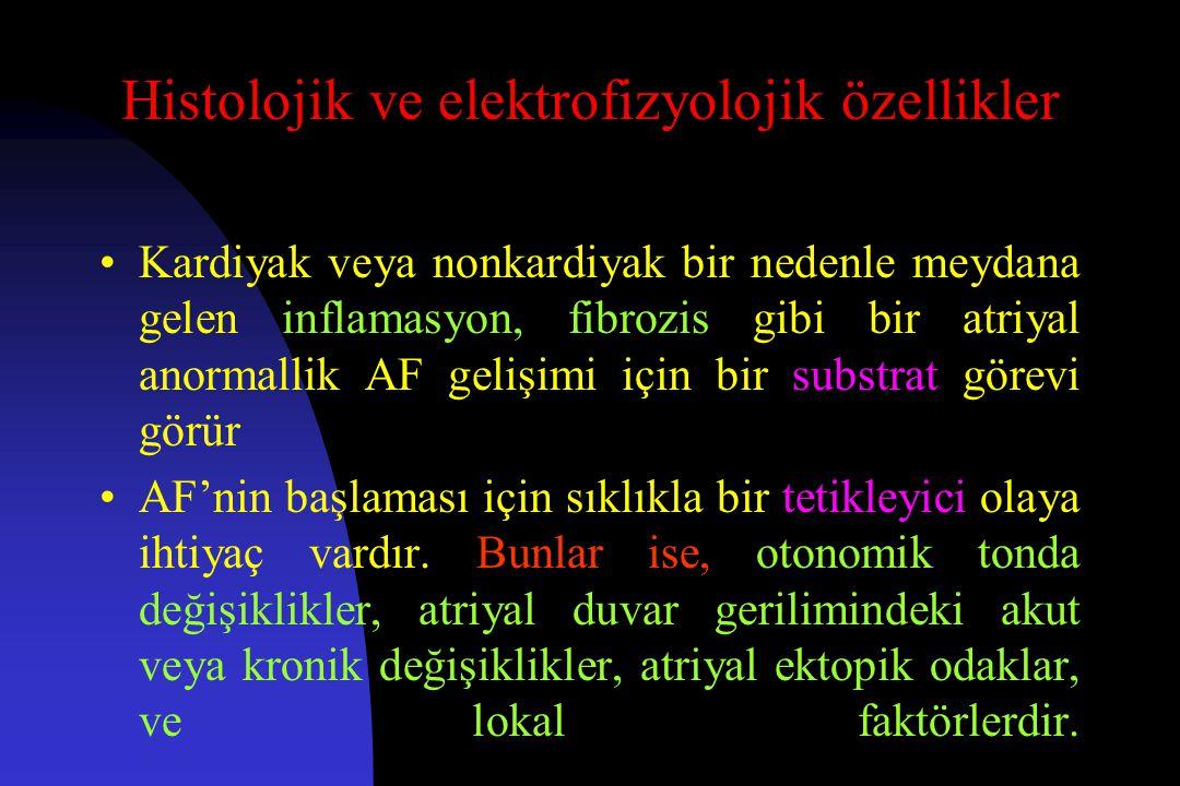 Histolojik ve elektrofizyolojik özellikler