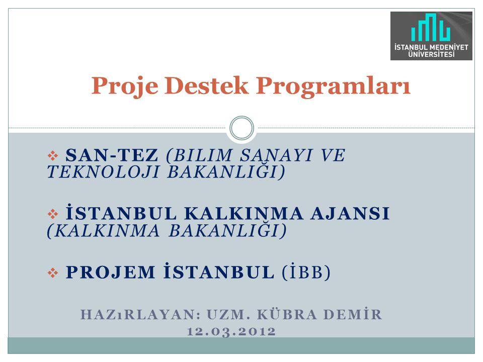 Proje Destek Programları