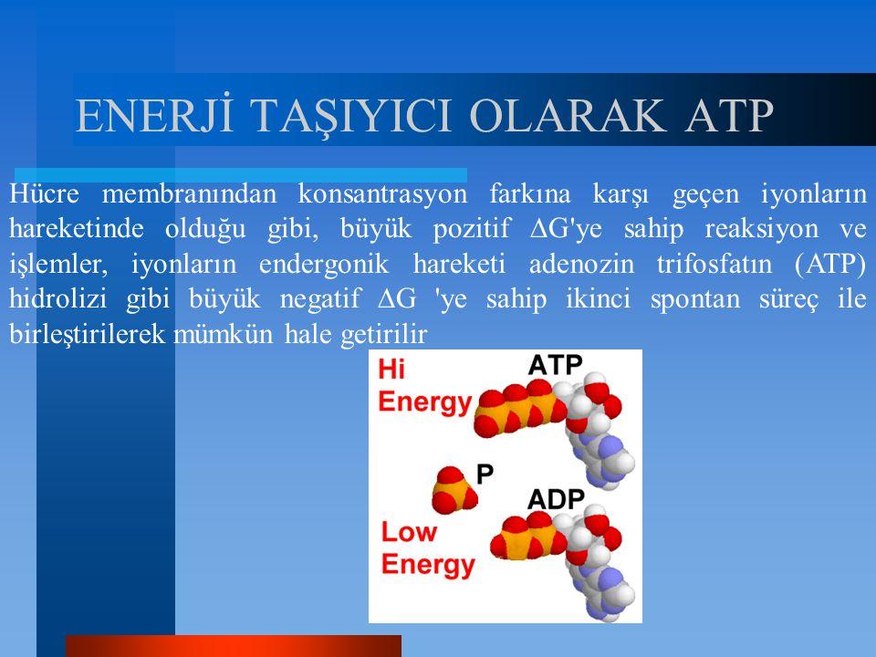ENERJİ TAŞIYICI OLARAK ATP