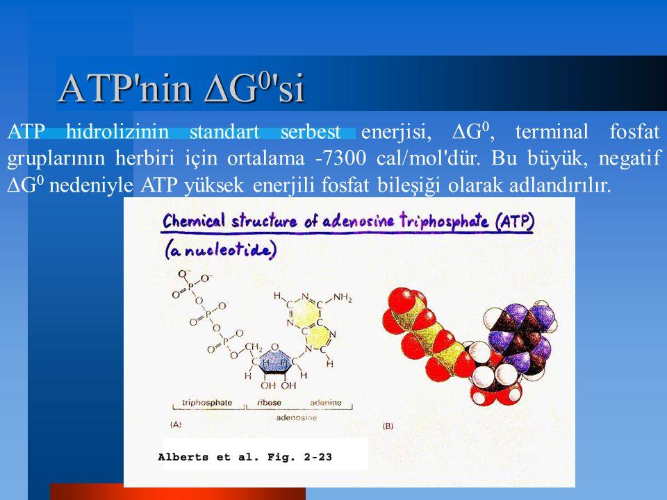 ATP nin G0 si