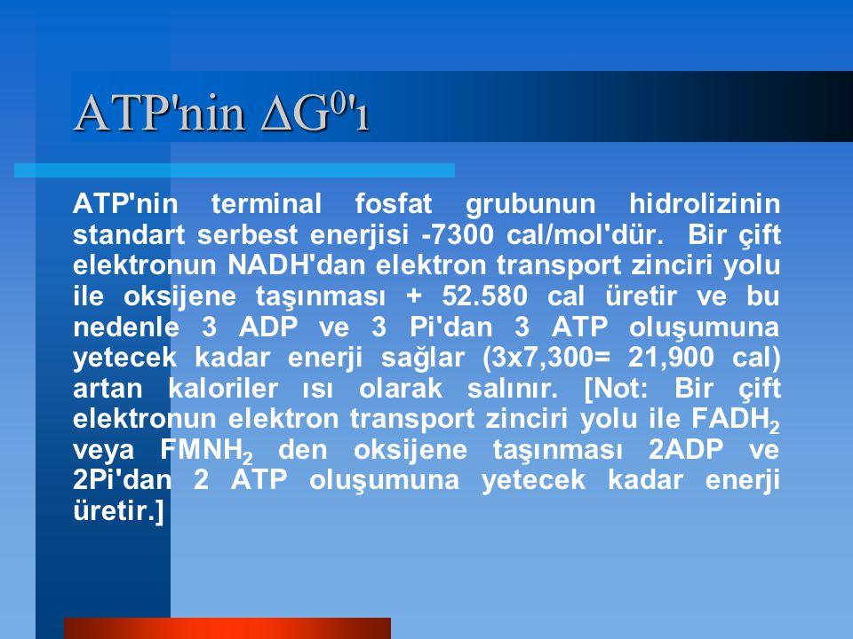 ATP nin G0 ı