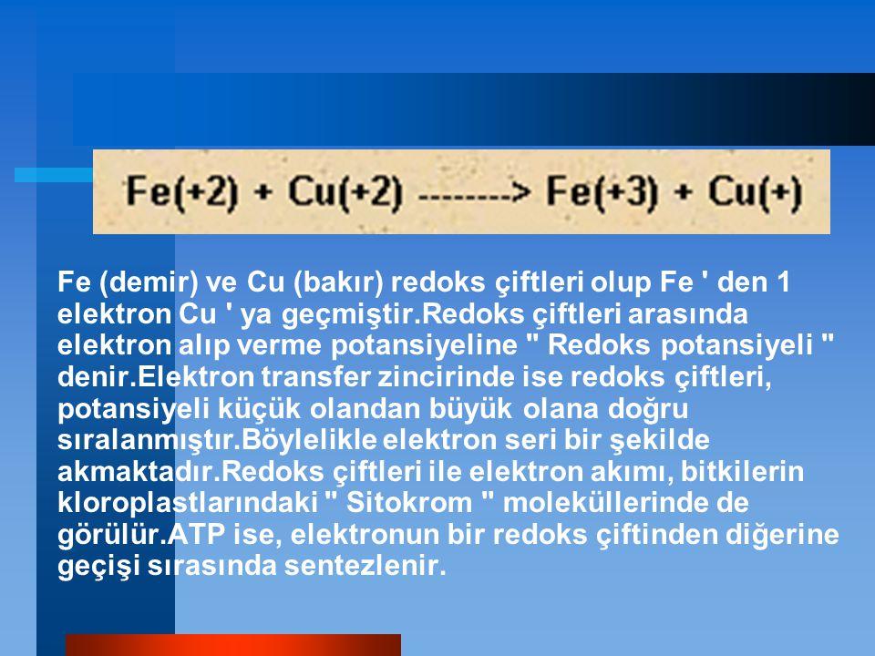 Fe (demir) ve Cu (bakır) redoks çiftleri olup Fe den 1 elektron Cu ya geçmiştir.Redoks çiftleri arasında elektron alıp verme potansiyeline Redoks potansiyeli denir.Elektron transfer zincirinde ise redoks çiftleri, potansiyeli küçük olandan büyük olana doğru sıralanmıştır.Böylelikle elektron seri bir şekilde akmaktadır.Redoks çiftleri ile elektron akımı, bitkilerin kloroplastlarındaki Sitokrom moleküllerinde de görülür.ATP ise, elektronun bir redoks çiftinden diğerine geçişi sırasında sentezlenir.