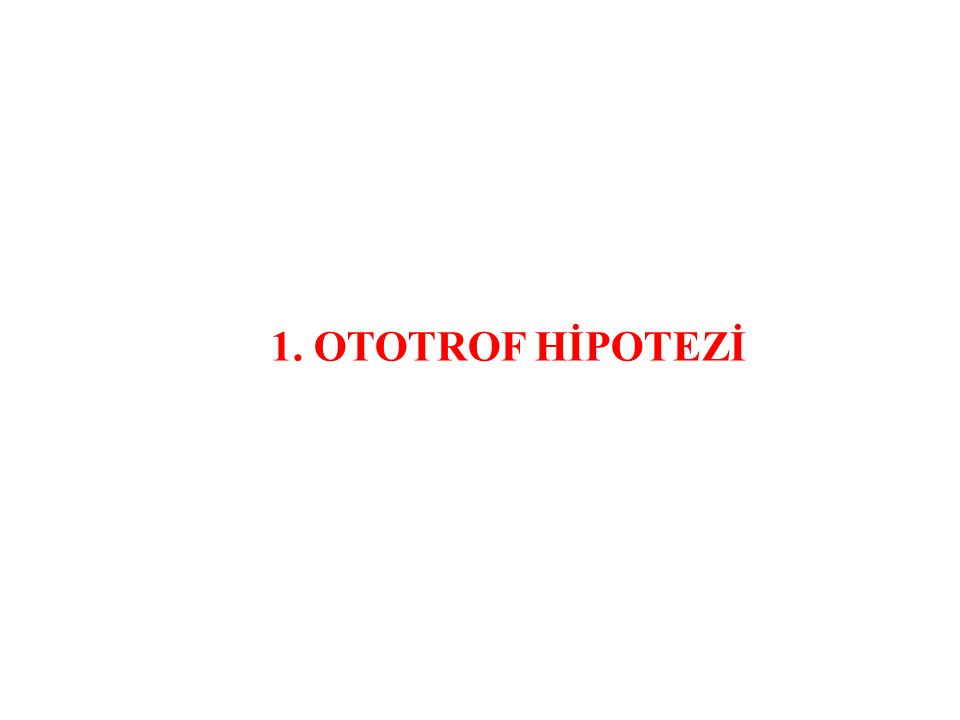 1. OTOTROF HİPOTEZİ