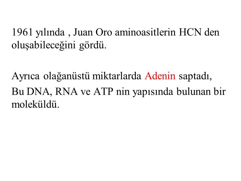 1961 yılında , Juan Oro aminoasitlerin HCN den oluşabileceğini gördü.