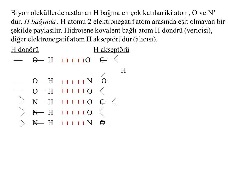 Biyomoleküllerde rastlanan H bağına en çok katılan iki atom, O ve N' dur. H bağında , H atomu 2 elektronegatif atom arasında eşit olmayan bir şekilde paylaşılır. Hidrojene kovalent bağlı atom H donörü (vericisi), diğer elektronegatif atom H akseptörüdür (alıcısı).
