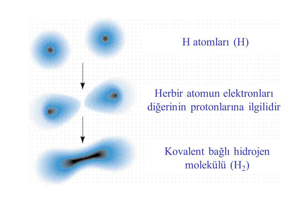 Herbir atomun elektronları diğerinin protonlarına ilgilidir