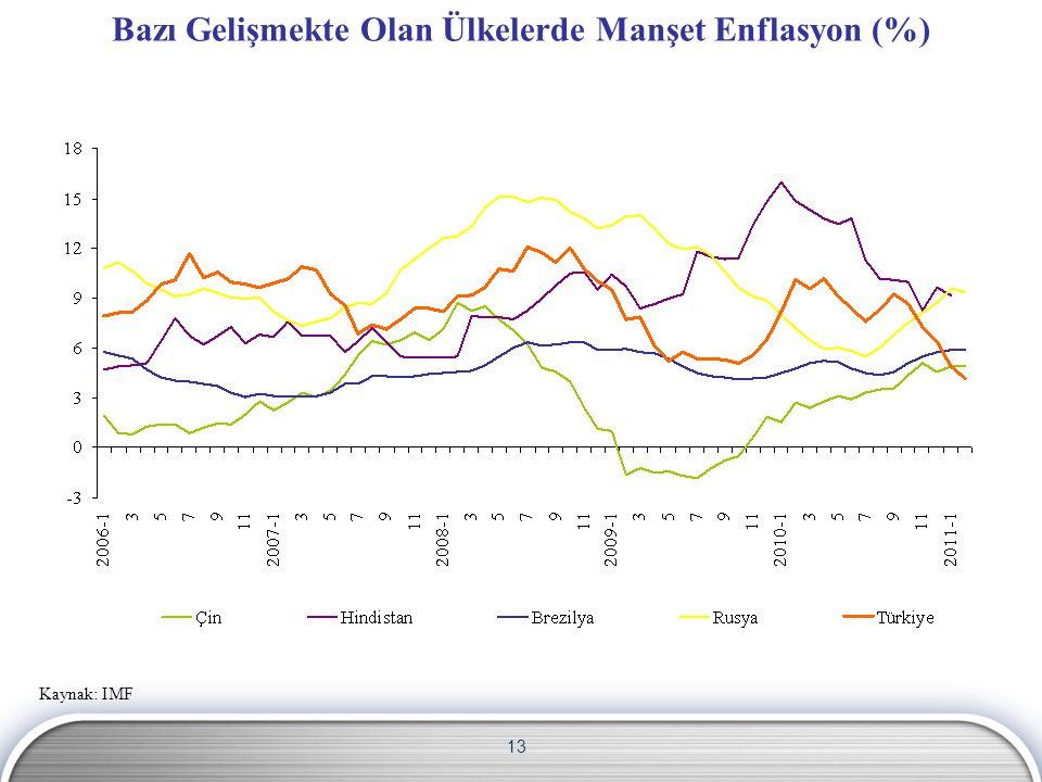 Bazı Gelişmekte Olan Ülkelerde Manşet Enflasyon (%)