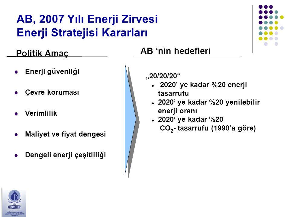 AB, 2007 Yılı Enerji Zirvesi Enerji Stratejisi Kararları