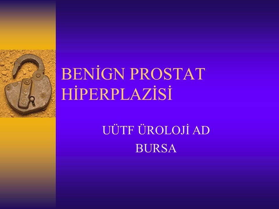 BENİGN PROSTAT HİPERPLAZİSİ