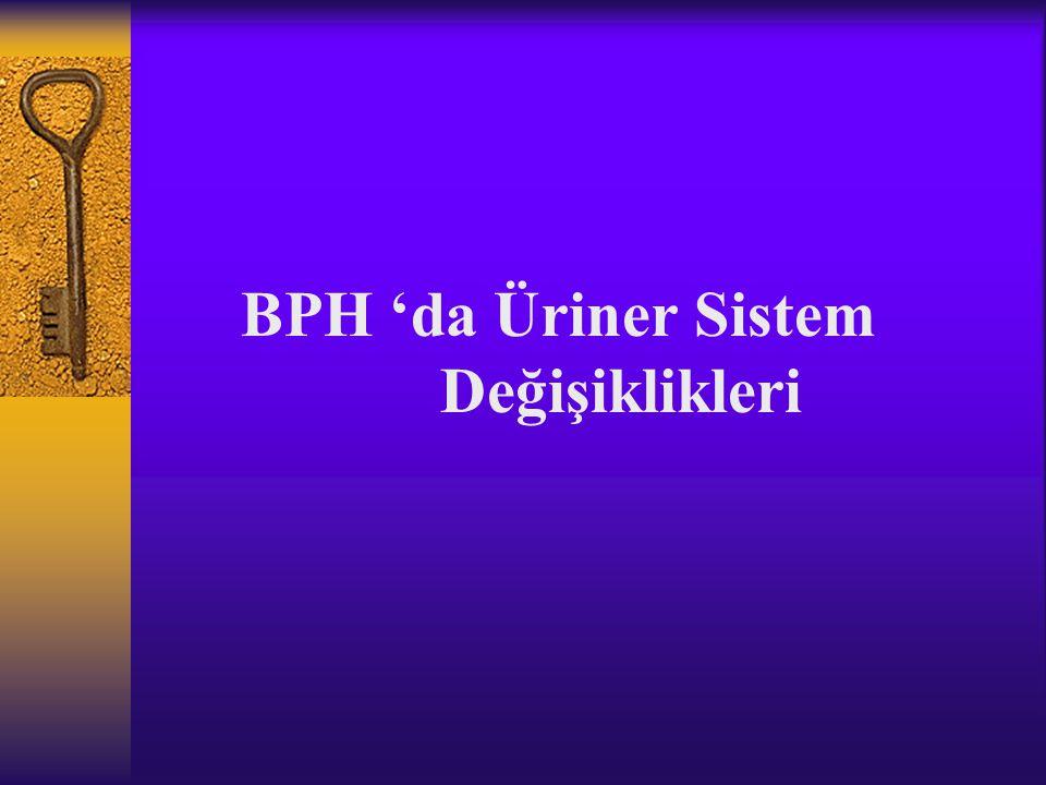 BPH 'da Üriner Sistem Değişiklikleri