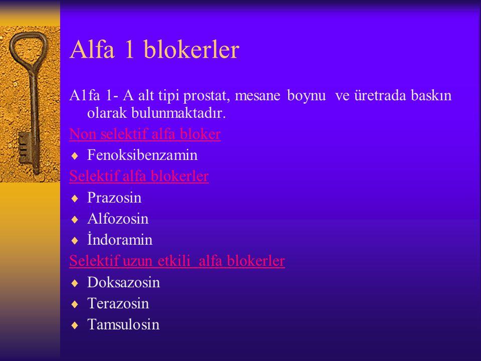 Alfa 1 blokerler Α1fa 1- A alt tipi prostat, mesane boynu ve üretrada baskın olarak bulunmaktadır.