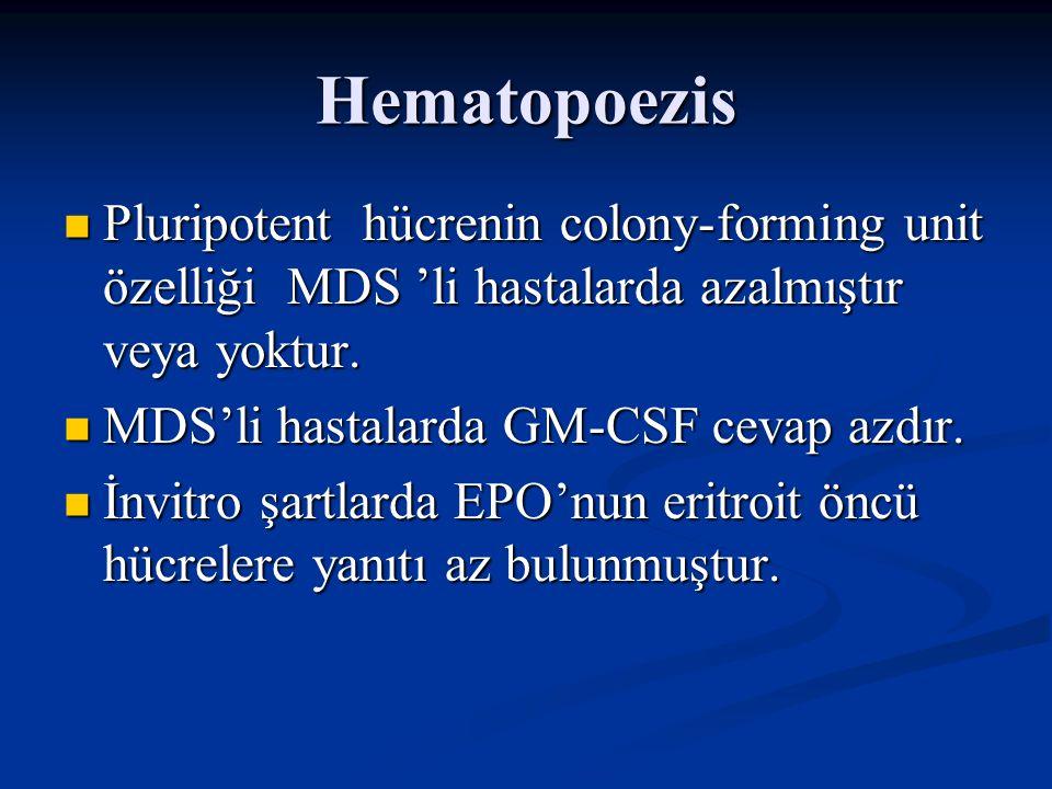 Hematopoezis Pluripotent hücrenin colony-forming unit özelliği MDS 'li hastalarda azalmıştır veya yoktur.