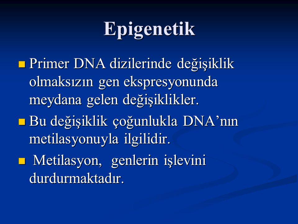 Epigenetik Primer DNA dizilerinde değişiklik olmaksızın gen ekspresyonunda meydana gelen değişiklikler.
