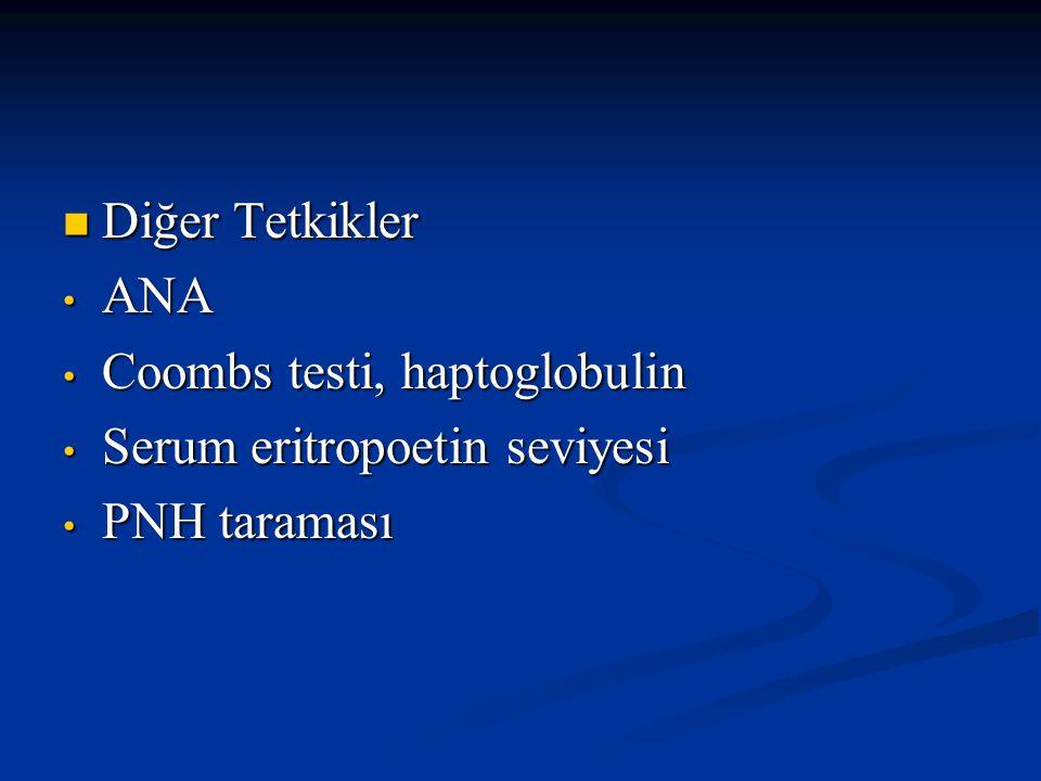 Diğer Tetkikler ANA Coombs testi, haptoglobulin Serum eritropoetin seviyesi PNH taraması