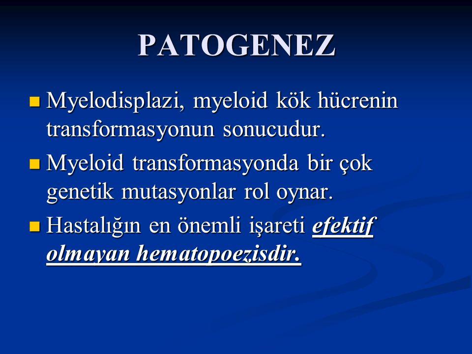 PATOGENEZ Myelodisplazi, myeloid kök hücrenin transformasyonun sonucudur. Myeloid transformasyonda bir çok genetik mutasyonlar rol oynar.