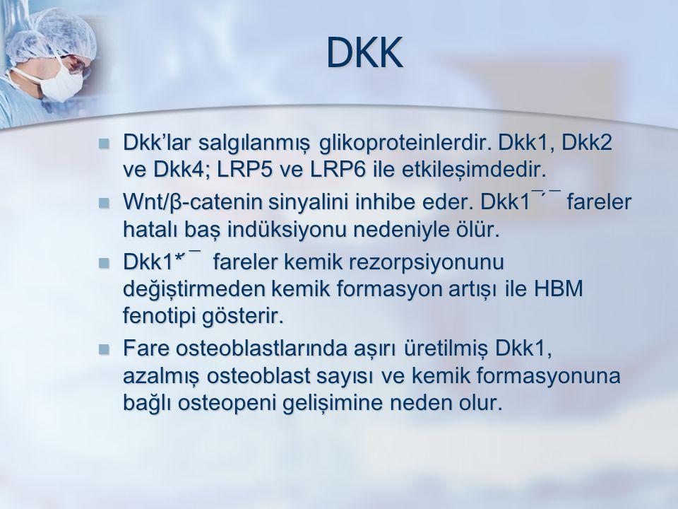 DKK Dkk'lar salgılanmış glikoproteinlerdir. Dkk1, Dkk2 ve Dkk4; LRP5 ve LRP6 ile etkileşimdedir.