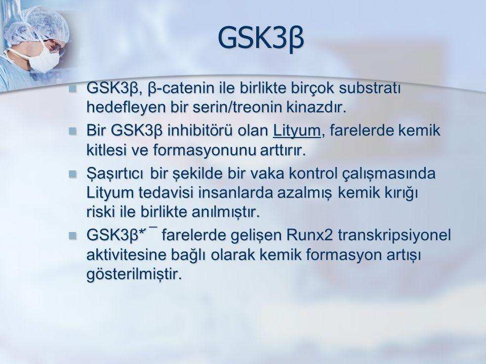 GSK3β GSK3β, β-catenin ile birlikte birçok substratı hedefleyen bir serin/treonin kinazdır.