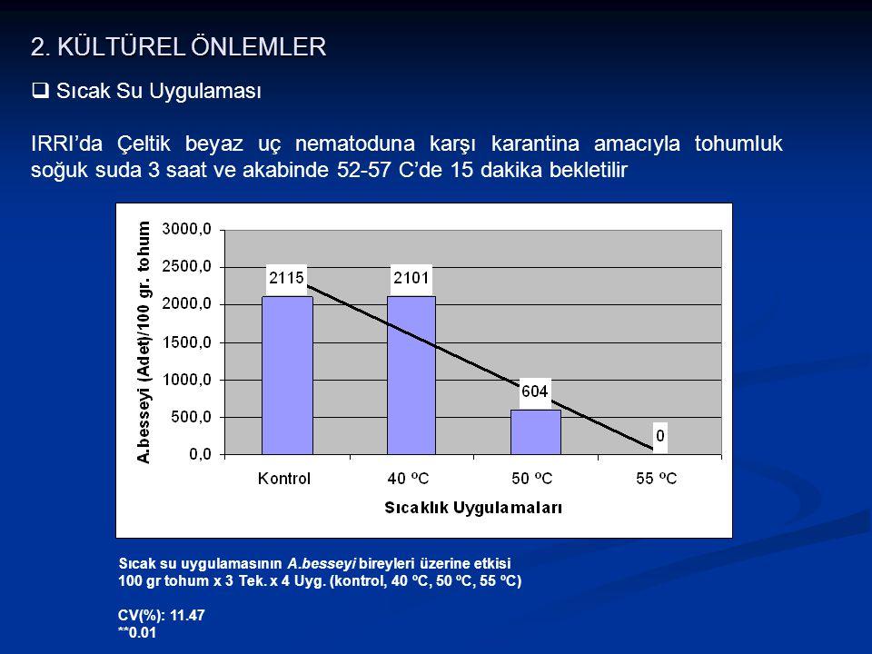 2. KÜLTÜREL ÖNLEMLER Sıcak Su Uygulaması
