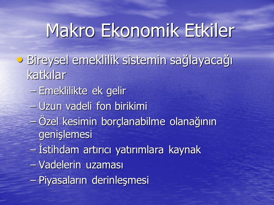 Makro Ekonomik Etkiler