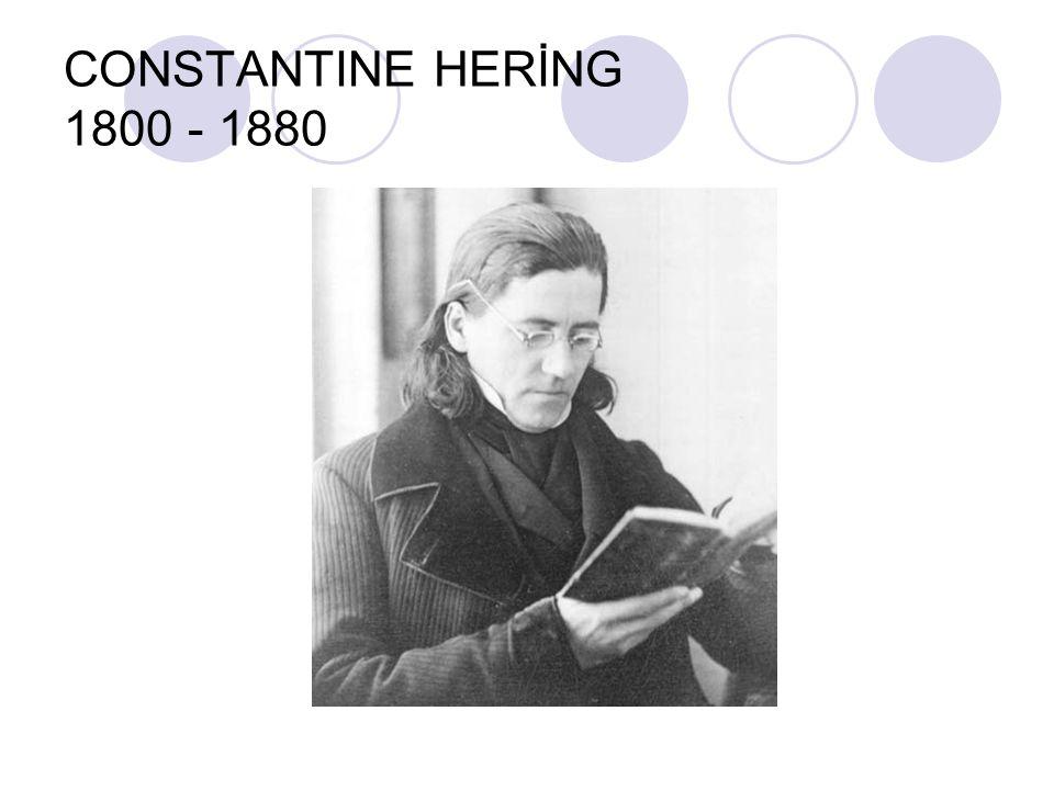 CONSTANTINE HERİNG 1800 - 1880