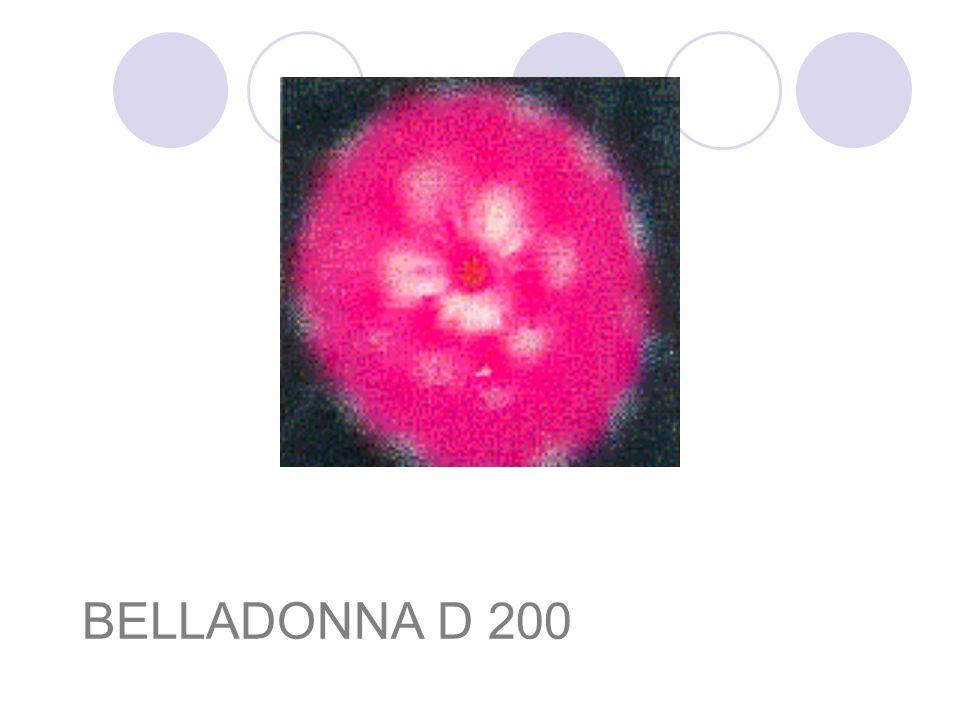 BELLADONNA D 200