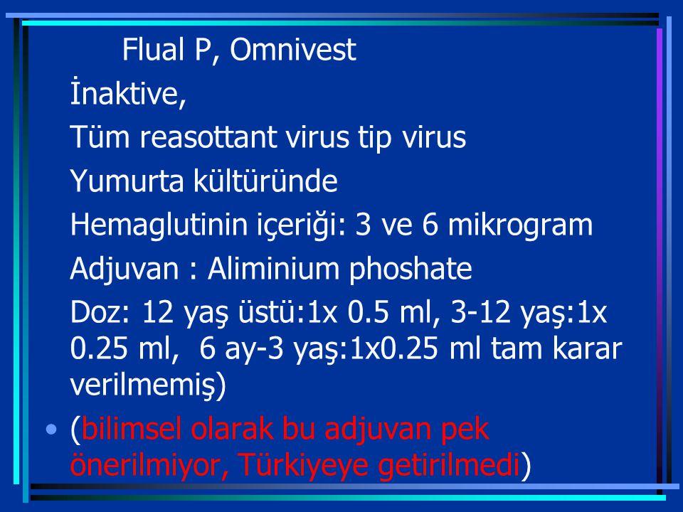 Tüm reasottant virus tip virus Yumurta kültüründe