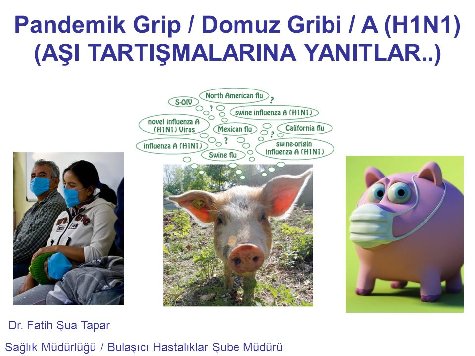 Pandemik Grip / Domuz Gribi / A (H1N1) (AŞI TARTIŞMALARINA YANITLAR..)