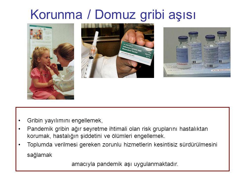 Korunma / Domuz gribi aşısı