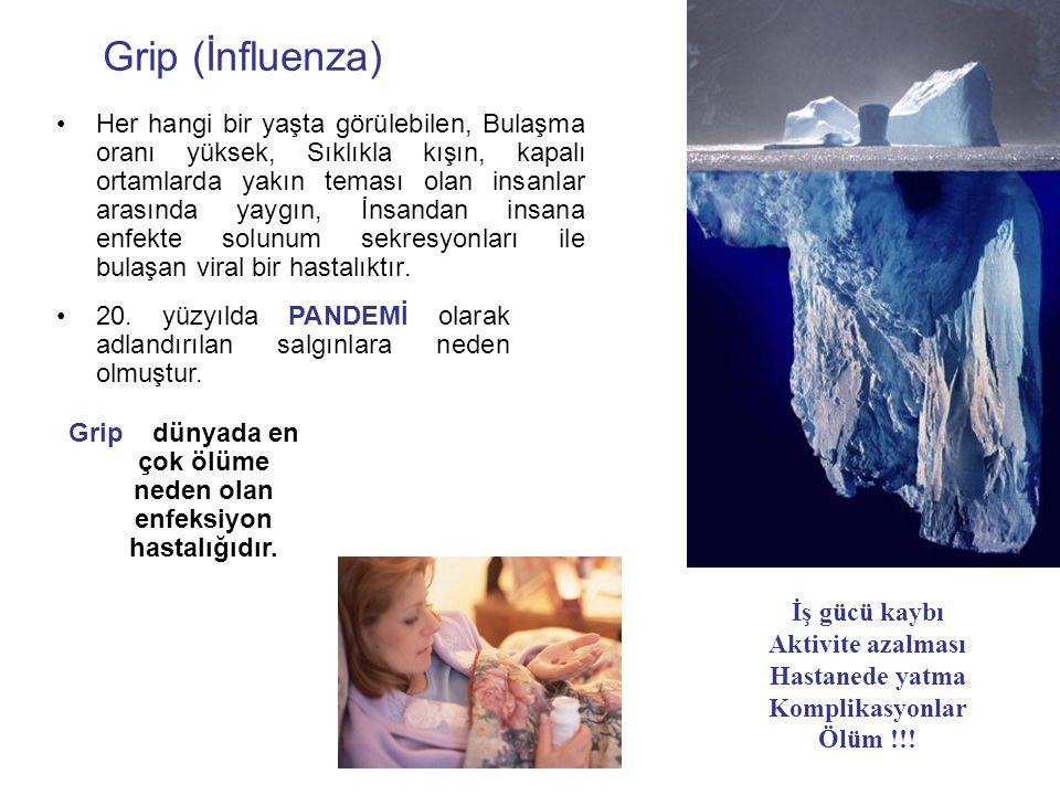 Grip dünyada en çok ölüme neden olan enfeksiyon hastalığıdır.