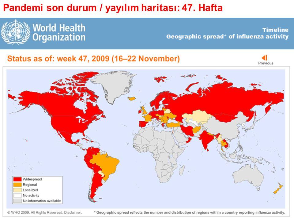 Pandemi son durum / yayılım haritası: 47. Hafta
