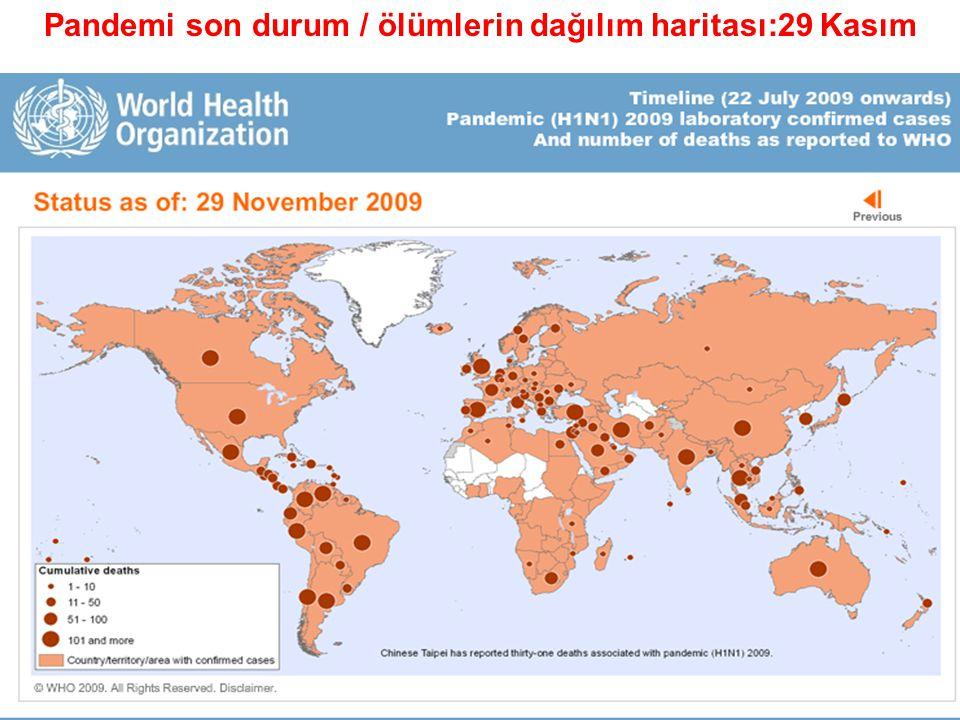 Pandemi son durum / ölümlerin dağılım haritası:29 Kasım