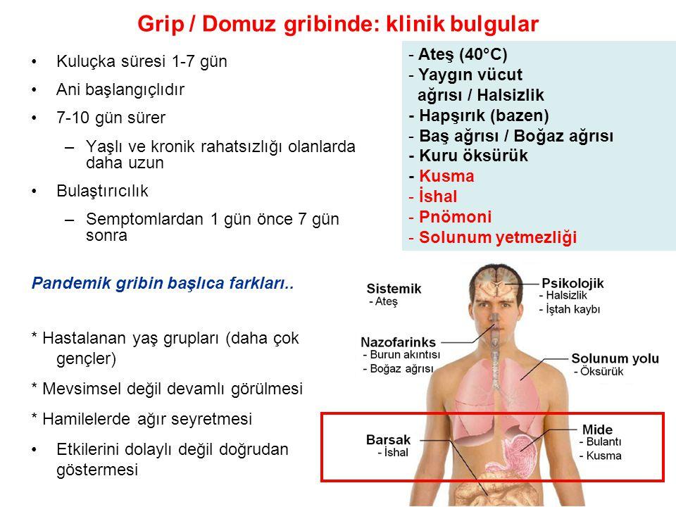 Grip / Domuz gribinde: klinik bulgular
