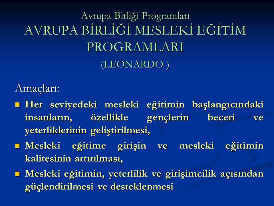 Avrupa Birliği Programları AVRUPA BİRLİĞİ MESLEKİ EĞİTİM PROGRAMLARI (LEONARDO )