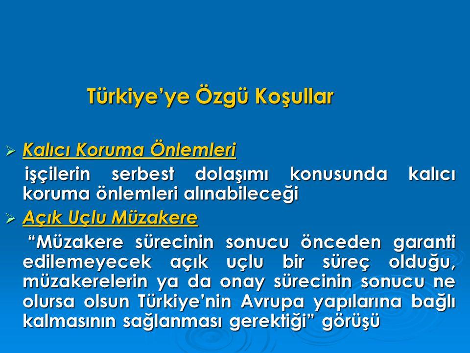 Türkiye'ye Özgü Koşullar