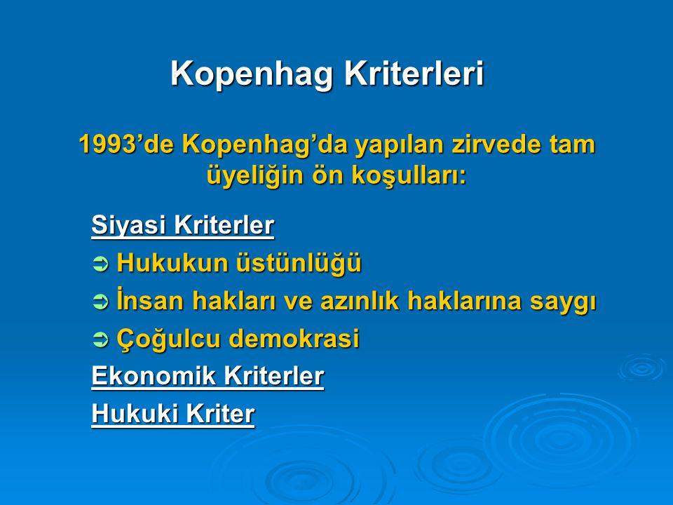 1993'de Kopenhag'da yapılan zirvede tam üyeliğin ön koşulları: