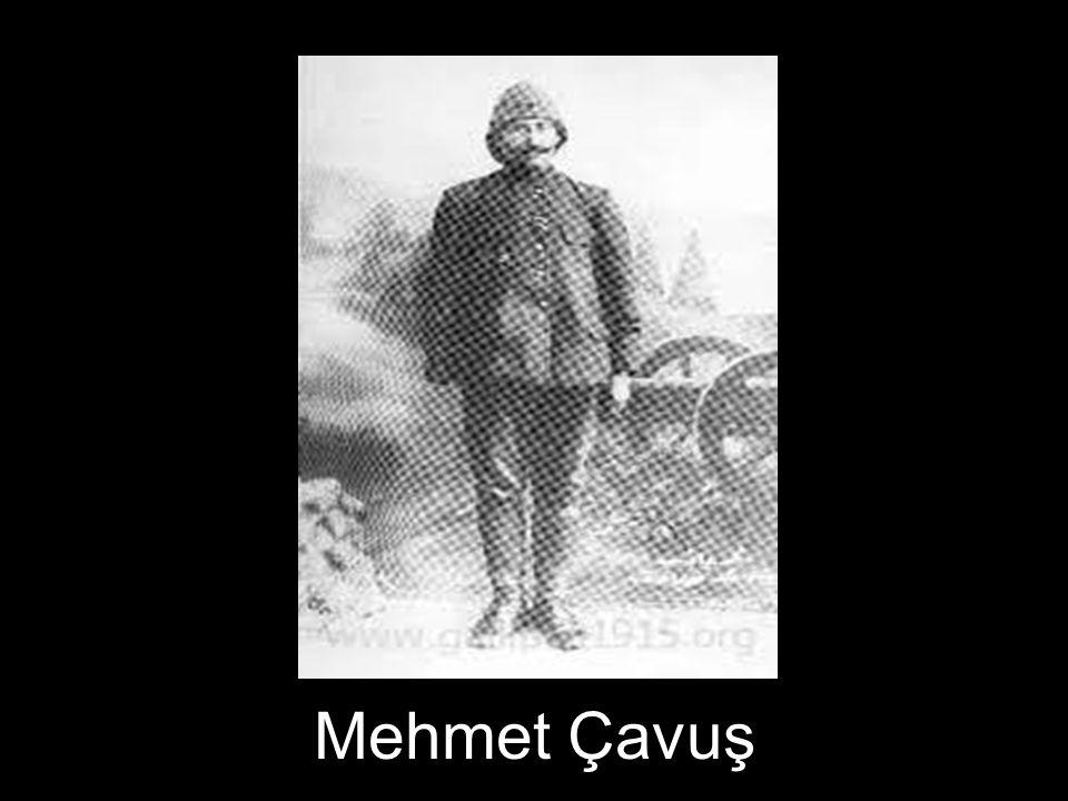 Mehmet Çavuş