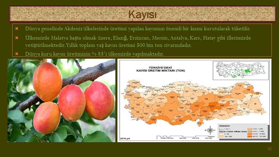 Kayısı Dünya genelinde Akdeniz ülkelerinde üretimi yapılan kayısının önemli bir kısmı kurutularak tüketilir.