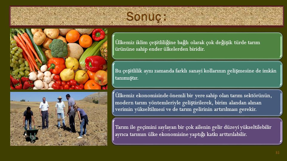 Sonuç : Ülkemiz iklim çeşitliliğine bağlı olarak çok değişik türde tarım ürününe sahip ender ülkelerden biridir.