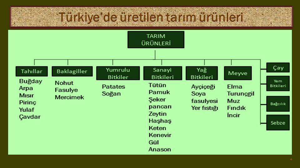 Türkiye'de üretilen tarım ürünleri