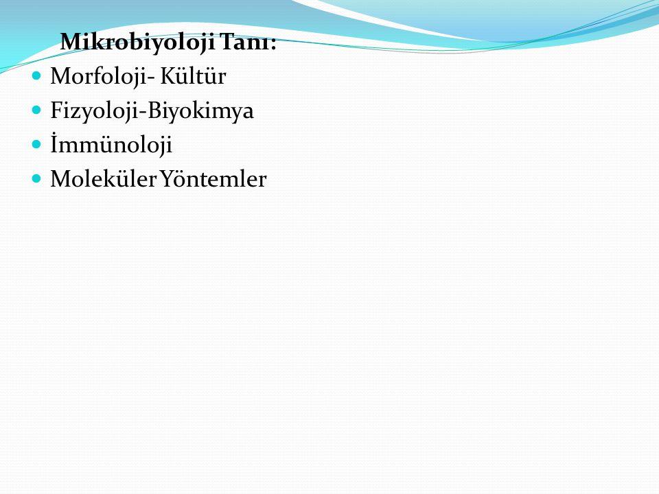 Mikrobiyoloji Tanı: Morfoloji- Kültür Fizyoloji-Biyokimya İmmünoloji Moleküler Yöntemler