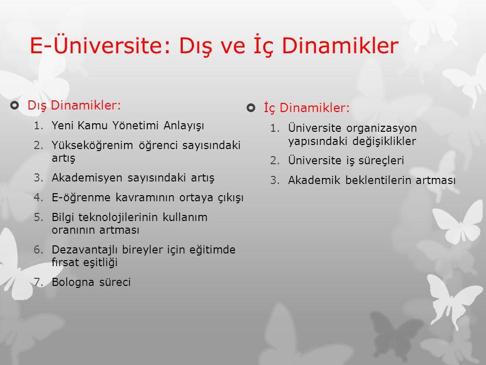 E-Üniversite: Dış ve İç Dinamikler