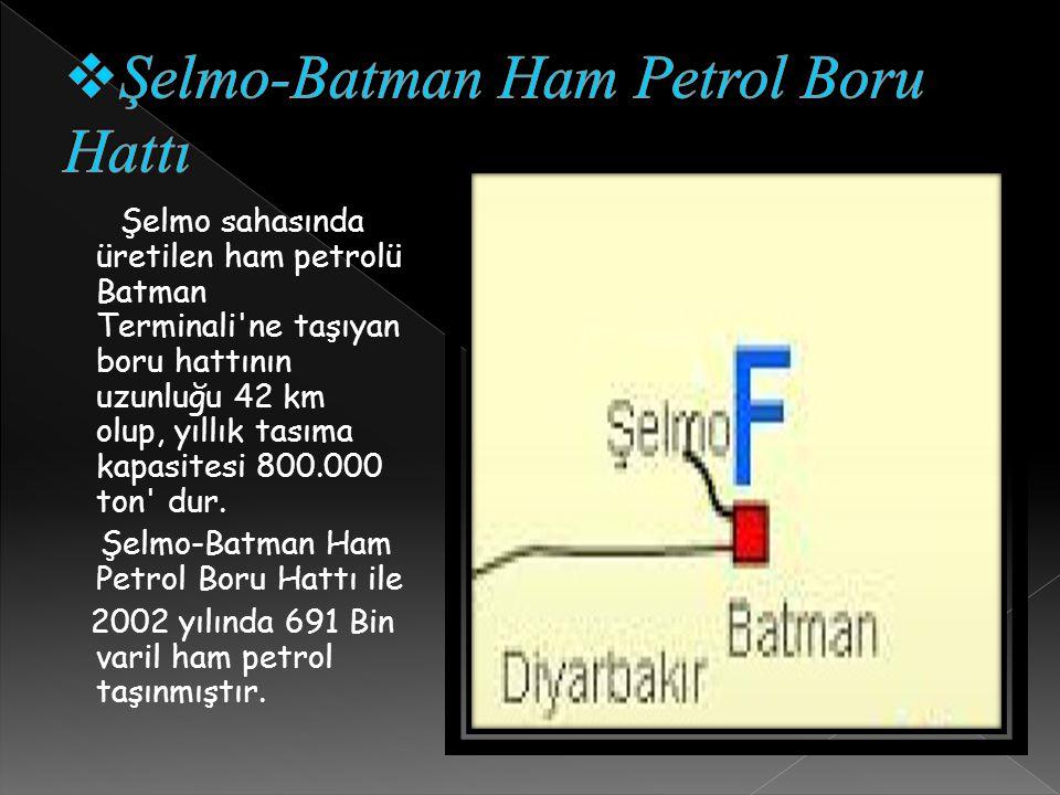 Şelmo-Batman Ham Petrol Boru Hattı