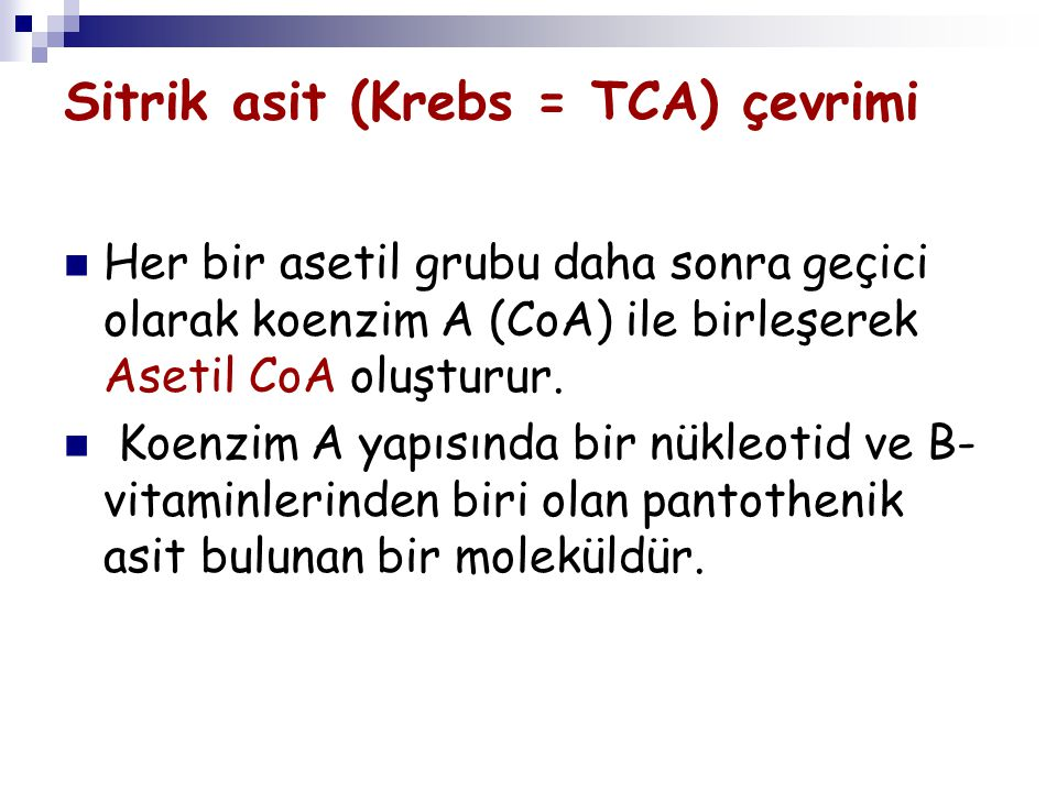 Sitrik asit (Krebs = TCA) çevrimi