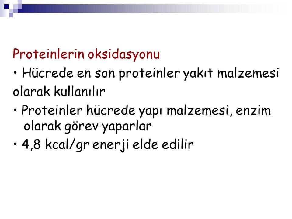 Proteinlerin oksidasyonu