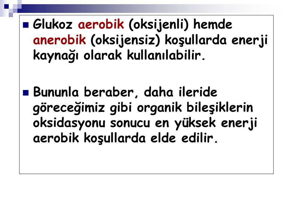 Glukoz aerobik (oksijenli) hemde anerobik (oksijensiz) koşullarda enerji kaynağı olarak kullanılabilir.